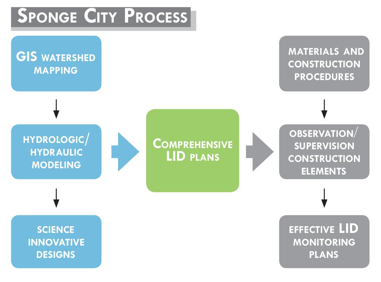 Sponge City Process